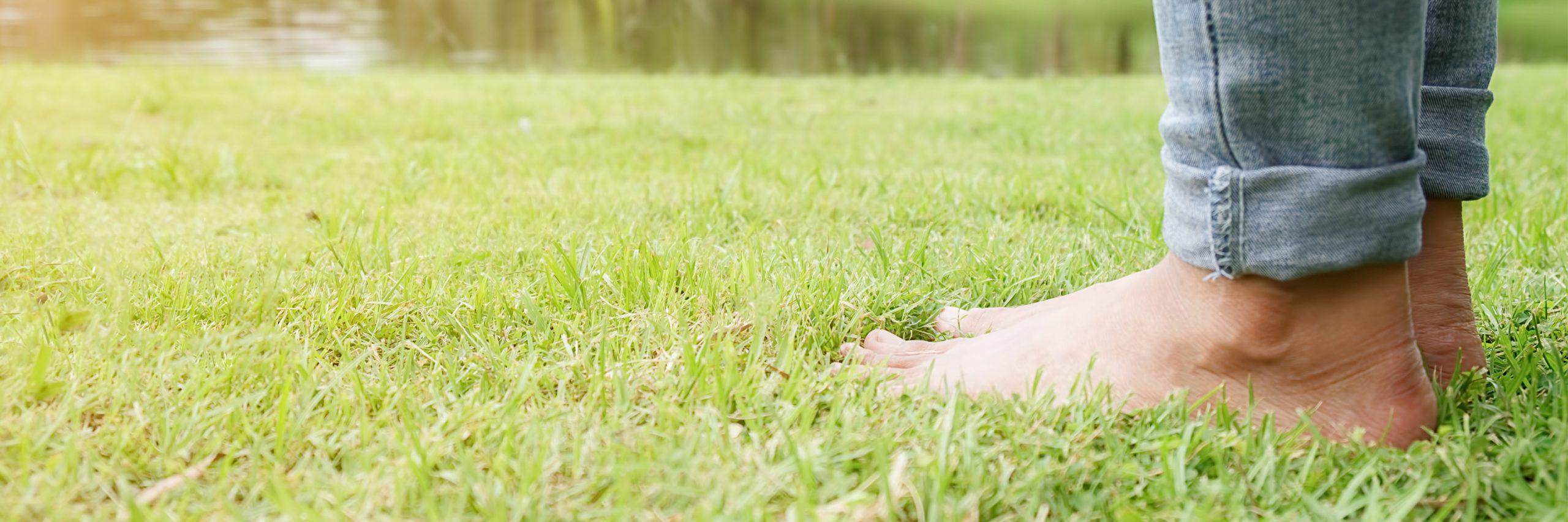 Tire teus sapatos e caminhe sobre o solo
